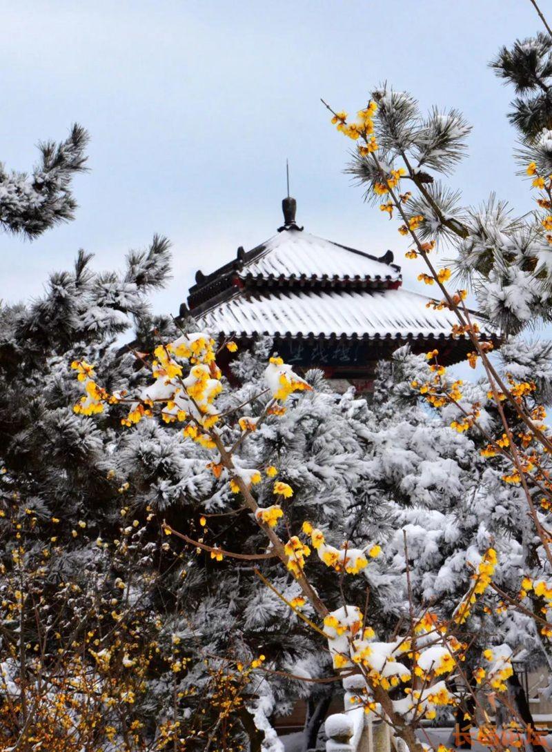 青岛琅琊台风景区初雪始料不及